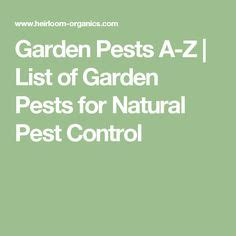 list of garden pests how to get rid of ground moles with soap soaps