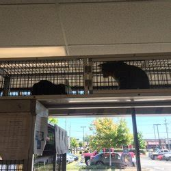 feeders supply pet stores 2221 state st, new albany