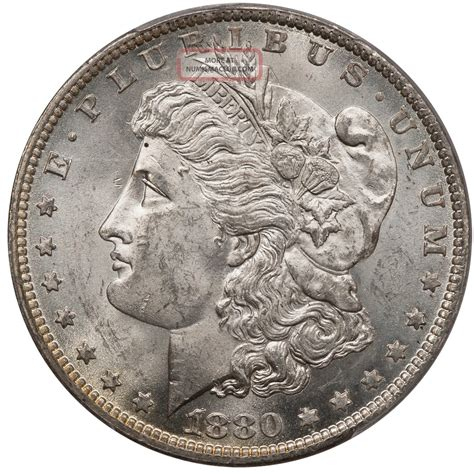 1880 o silver dollar 1880 o silver dollar 1 vam 7 pitted obverse die