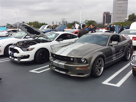 mustang cruise mustang madness at the carroll shelby birthday cruise in