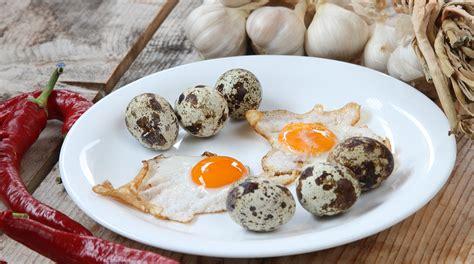 come cucinare l uovo ai bambini come cucinare le uova di quaglia i nostri consigli