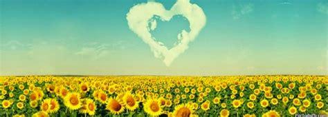 imagenes de flores bonitas para portada im 225 genes arte pinturas portadas con flores y frases para
