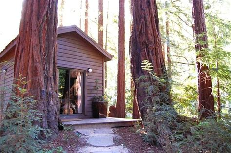 Glenhaven Cabin by Sur Cabin Picture Of Glen Oaks Big Sur Big Sur