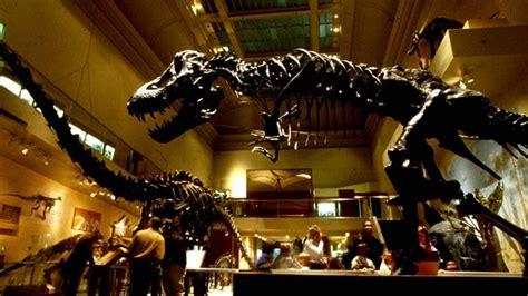 film tentang dinosaurus terbaik museum dinosaurus terbaik dunia inilah lima di antaranya