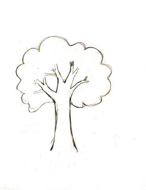 how to draw a doodle tree piccolo albero da colorare