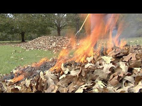 Burn Leaves In Backyard by 81 Best Images About Pits Burning Yard Waste On