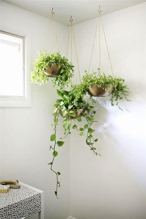 hanging plant diy unique diy hanging planters