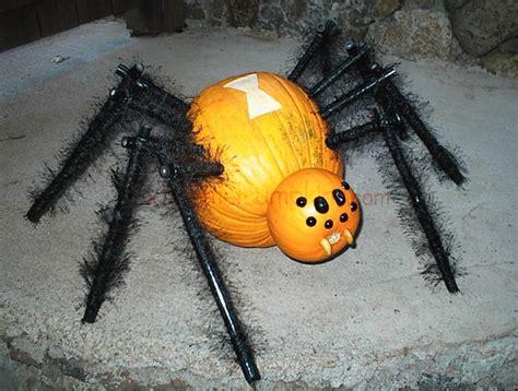 pumpkin spider a black widow pumpkin