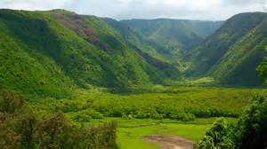 hawaii visitors and convention bureau auto review price