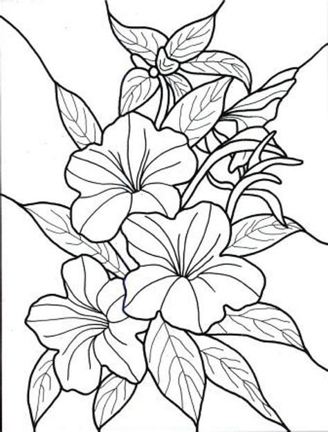 coloring pages for adults abstract flowers flower coloring pages for adults printable pict 78431