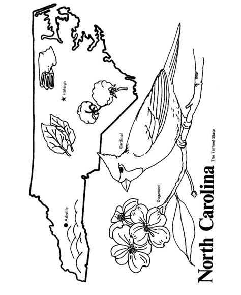nc map coloring page 17 best images about string art on pinterest nail string