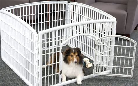 playpens for dogs best playpen for dogs reviews n treats