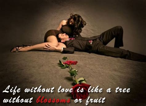 images of love romantic miracle of love romantic love