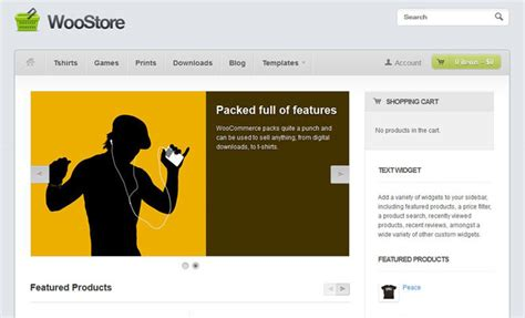 woostore themes 34 woocommerce themes that turn wordpress into an online