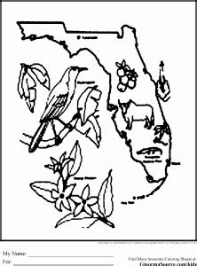 florida coloring pages states project map  florida
