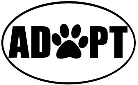 where can i adopt a puppy the rescue diaries adapting to adopting