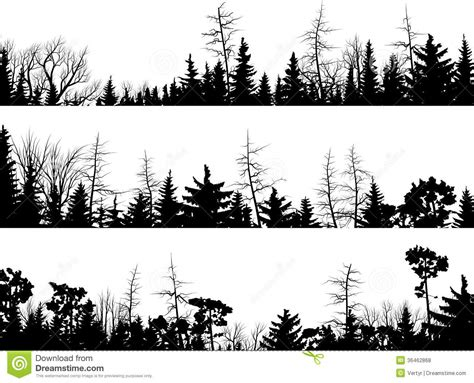 horizontal silhouettes of coniferous wood stock vector