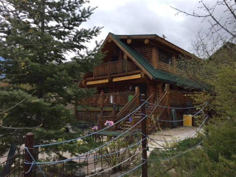 Cookie Cabin Mt Lemmon by O Verdadeiro Cookie Americano Picture Of Mt Lemmon
