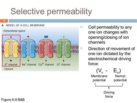 ionic equilibria  membrane potential