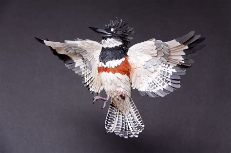 paper birds sculptures by diana beltran herrera