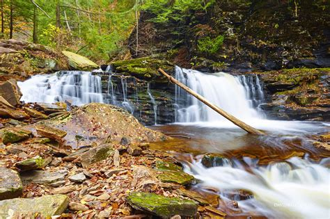 Landscape Park Definition Rivers Lakes Waterfalls Archives David Balyeat