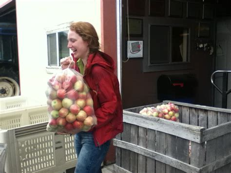 locally donated apples fight hunger within the community