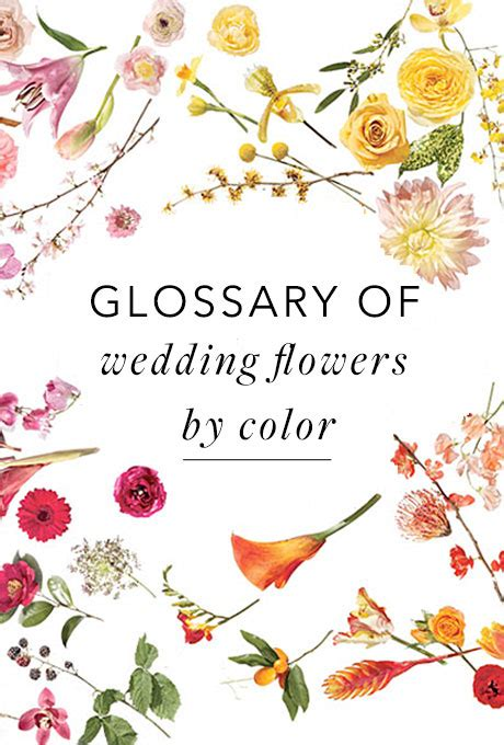 flowers by color a glossary of wedding flowers by color brides