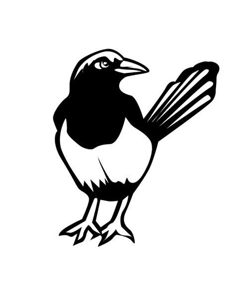 magpie bird coloring page magpie bird coloring page prater lane 3 4 year olds