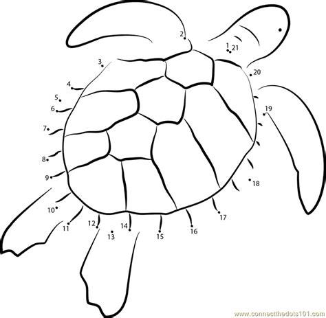 dot to dot turtle printable green sea turtle dot to dot printable worksheet