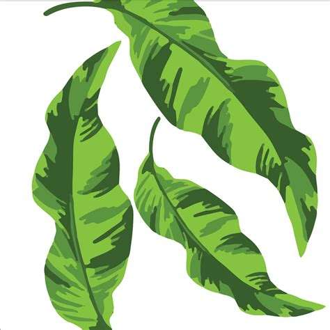 banana leaf wallpaper ebay green and white wildflower wallpaper
