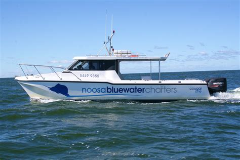 bluewater breeze boat noosa blue fishing charters offshore fishing