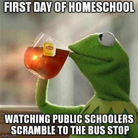 Home School Meme - my favorite homeschool memes zephyr hill