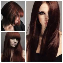 cinnamon colored hair using cinnamon to color hair brown hairs