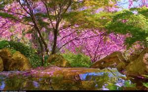 comment cr 233 er un jardin japonais plantes et nature