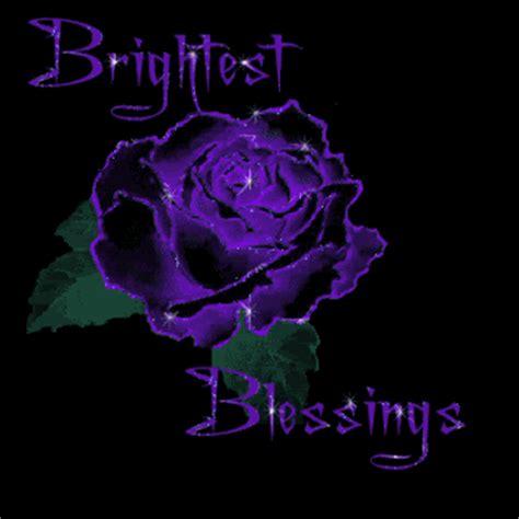 purple rose clip art | all graphics » purple rose | vines