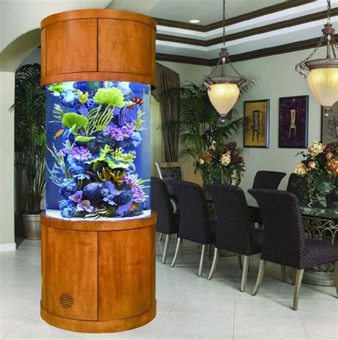aquarium design los angeles 94 best fish tanks in the office images on pinterest