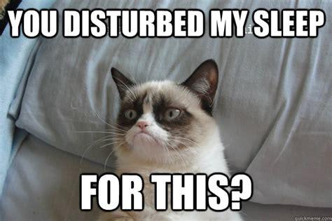 Grumpy Cat Sleep Meme - you disturbed my sleep for this grumpy cat wake up