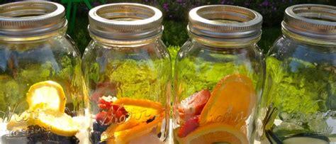 Will Chorella Detox Bpa Out Of by Fruitwater Maken 10 Gratis Fruitwater Recepten Om Zelf Te