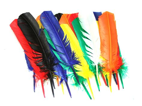 feather crafts for assorted indian coloured craft feathers pack of 25
