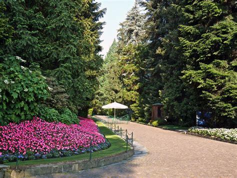 giardini terrazzati sequenza compatta di rari esemplari di conifere