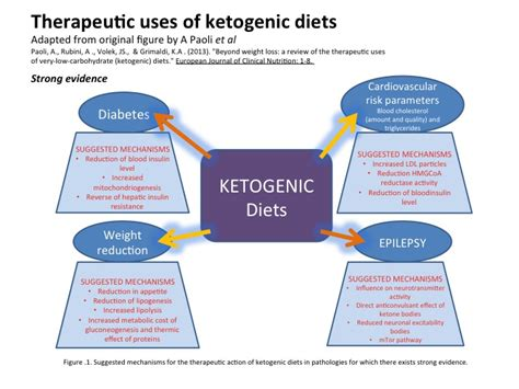 Does A Keto Diet Help You Detox by How Ketogenic Low Carb High Diets Work The Science