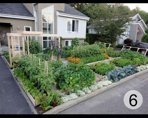 front yard nursery 25 best ideas about front yard gardens on
