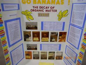 Kitchen Chemistry Experiments Ppt 8 Best Images About Science Fair On Biology