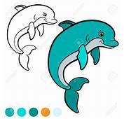 Delfines Dibujos Infantiles Cool