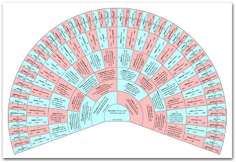 modele arbre genealogique gratuit 10 niveaux la gestion des photos dans votre arbre g 233 n 233 alogique blog