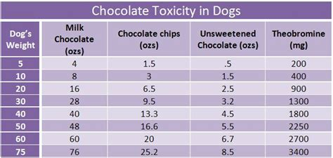 chocolate toxicity the pet wiki 7 best quotables images on pinterest animal pics animal