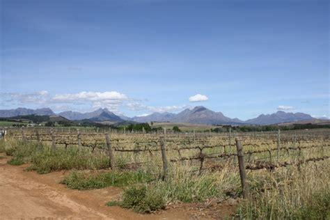 Landscape Cape Town Cape Town Vineyards Landscape Free Stock Photos In Jpeg