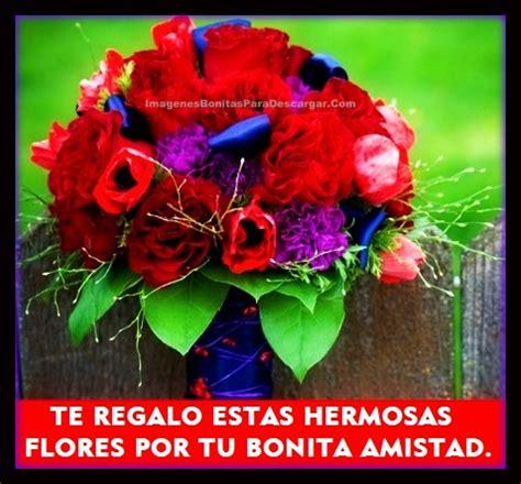 imagenes para una amiga con rosas rosas para mis amigas rosas para mis amigas youtube