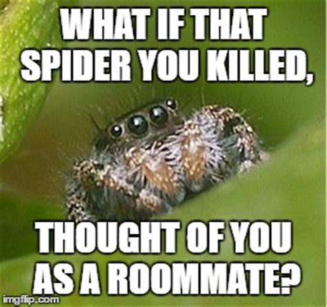 Memes About Spiders - misunderstood spider imgflip