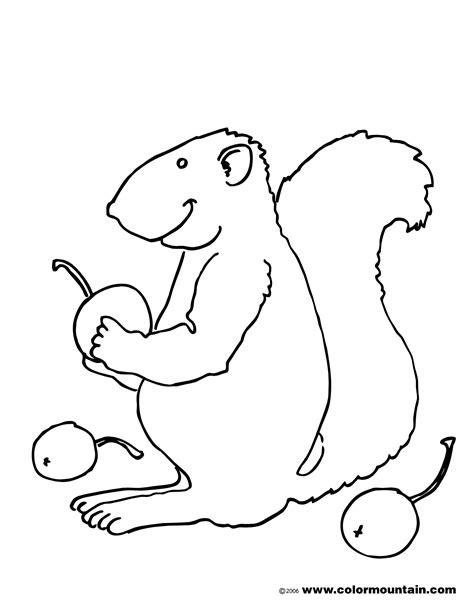 coloring page gray squirrel grey squirrel coloring coloring pages